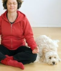 A How-To guide to teach you how to do yoga with your dog.