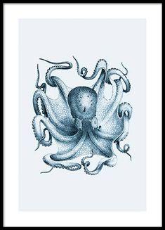 Illustrazioni e poster illustrati online da Desenio