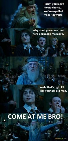 don't even watch harry potter but this made my day