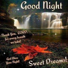 Good Night Family, Good Night Sister, Good Night Everyone, Good Night Friends, Night Love, Good Night Image, Good Morning Good Night, Good Night Prayer Quotes, Night Qoutes