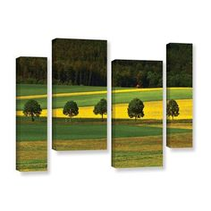 ArtWall 5026Aaa1 by Lindsey Janich 4 Piece Photographic Print on Gallery-Wrapped Canvas Staggered Set Size: