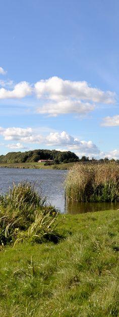 Am Winderatter See in der Landschaft Angeln an der Flensburger Förde, Ostsee, Schleswig-Holstein.