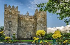 """""""This museum is just perfect in I haven't seen as big as this museum before about the history of a country. The castle & park shows how was the life in the castle. Barcelona Cathedral, Ireland, Castle, Museum, Mansions, Park, History, Country, House Styles"""
