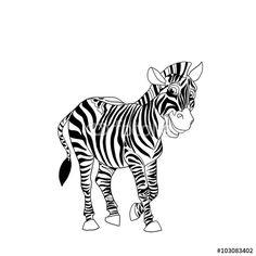 Zebra isolated on white background. Cartoon black and white  illustration.