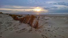 Nederlandse stranden waar u het rijk (bijna) voor u alleen heeft | Paradijsvogels Magazine