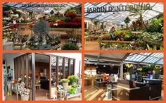Botanic Cesson Bois Senart 77 Une Jardinerie Naturelle