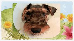 Alf Airedale, terrier of the neighborhood, begins his story with a tail, er, tale. Airedale Terrier, Book Stuff, The Neighbourhood, Dogs, The Neighborhood, Pet Dogs, Doggies, Dog