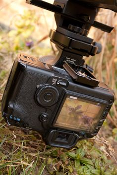 Using liveview for focusing on the camera's rear LCD
