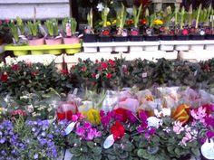 Colourful corner, Via Washington, Milan