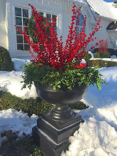 Faux Holly berries, en masse. The rim of the urn is a boxwood WREATH, laid down | 5th and state