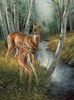 Birch Creek-Whitetail Deer by Rosemary Millette|WildWings