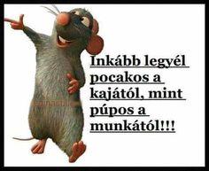 Geek Humor, Karma, Geek Stuff, Funny Memes, Lol, Retro, Quotes, Smile, Collage