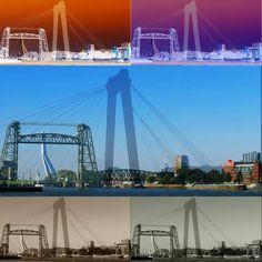 Rotterdamse bruggen