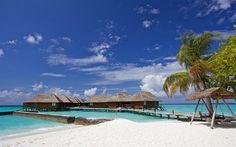 Lataa kuva Kesällä, meri, Malediivit, bungalows, ranta, kämmenet, trooppisia saaria