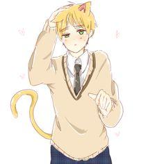 kitty england :3 omgg cuteness overload *dies*