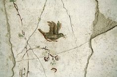 Excavated from Stabiae, near Pompeii - Villa Poppaea.            Detail of painted wall decorations of the portico
