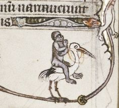 Riding the Stork  Psalter, England 13th century.  Bodleian, MS. Douce 5, fol. 211v