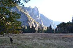 Yosemite October 2016