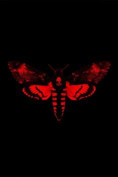 UPDATE: Lil Wayne enlists 2 Chainz, Nicki Minaj, Big Sean and more for his new album. Lil Wayne Albums, Lil Wayne Songs, Rapper Lil Wayne, Rap Albums, Hip Hop Albums, Music Albums, 2 Chainz, Big Sean, Nicki Minaj