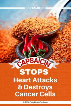 05 Capsaicin Stops Heart Attacks And Destroys Cancer Cells (2)