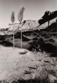 Metafore, Disegno di una porta per entrare nell'ombra, 1973