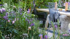 The LG Smart Garden | RHS Chelsea Flower Show 2016