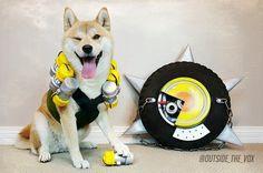 Overwatch Doge Cosplay <3 - Album on Imgur