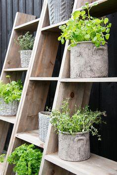Vertical garden! Madam Stoltz via deens.nl