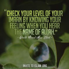 """""""The believers are only those who, when Allah is mentioned, their hearts become fearful....."""""""