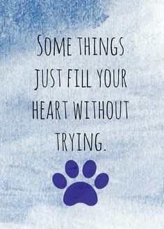 Some things... #dog #quote #saying | www.fordogtrainers.com