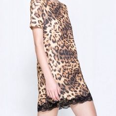 Leopard print shift dress with lace hem Gorgeous leopard print dress with black zipper up back and black lace around hem- perfect little go anywhere dress! Dresses