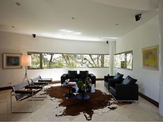 Embellish Your Home With Awesome Cowhide Rugs : Amusing Brown and White Cowhide Rug in Enthralling Living Room with Black Leather Two Seat Sofa and Two Black Pedestal Coffee Table also White Wall Painting