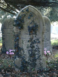 Old graveyard *Old headstones; Ivy: I think this is beautiful ! Cemetery Headstones, Old Cemeteries, Cemetery Art, Graveyards, Highgate Cemetery, Halloween Graveyard, Halloween Tombstones, Between Two Worlds, The Villain