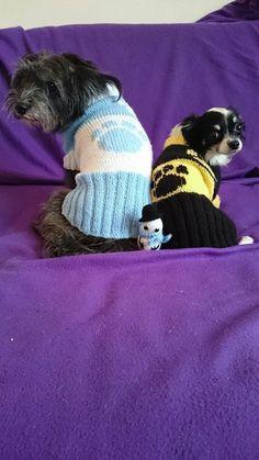 Hundepullover , Dog Sweater  http://www.kleinspitzhundemodelfuerstrickpullover.de
