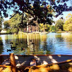 https://flic.kr/p/yb4VXC | Magic spot in the Villa Borghese Gardens! #upsticksandgo #gardens #villaborghesegardens #travel #instaitalia #instatravel #italy #rome #roma #lake #michfrost