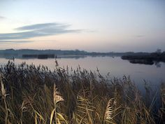 Read about the Norfolk Broads, Norwich, the Fens, Brecklands and the Norfolk Coast. Norwich Cathedral, Cathedral City, Norfolk Broads, Norfolk Coast, Boat Covers, Days Out, Storyboard, Britain, Life Is Good
