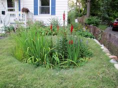 Prairie Gardens & Rain Garden Contractors in Wayne County, MI Prairie Garden, Wayne County, Rain Garden, Sustainability, Year 2, Landscape, Green, Plants, Healthy