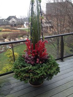 red and green 2015 Fir Christmas Tree, Christmas Planters, Christmas Garden, Outdoor Christmas Decorations, Advent, Winter Container Gardening, Winter Planter, Christmas Floral Arrangements, Church Flowers