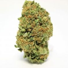 Weeds Strains Archives - Page 2 of 4 - Global Weed Shop Buy Edibles Online, Buy Cannabis Online, Weed Shop, Buy Weed, Weed Strains, Indica Strains, Weed California, Weed Buds, Purple Candy