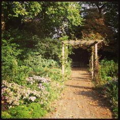 Old english garden