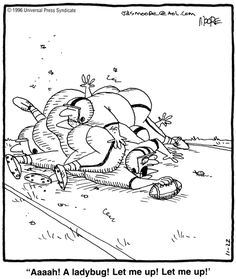 For November 1996 Funny Cartoon Pictures, Funny Jokes For Adults, Fun Comics, Comic Strips, November, Humor, November Born, Adult Dirty Jokes, Jokes For Adults