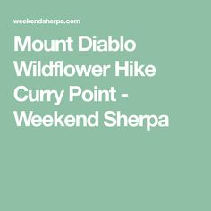 Mount Diablo Wildflower Hike Curry Point - Weekend Sherpa
