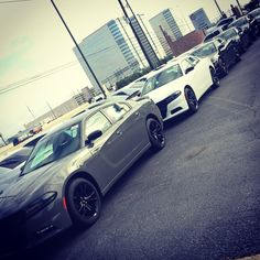 Its A Great Day at MacHaikHouston... A ton of New and Pre-Owned Vehicles in stock... Dont waste your time anywhere else with a endeless back and forward negociation straight to the point and IN your Budget. Make sure you contact me and i guarantee you that no one will beat my price. #texas #houston #energycorridor #chrysler #dodge #jeep #ram #bestdeal #offroad #sema2017 #rodeo #hotshottruck #new #preowned #hotshot #uber #lyft #srt #hellcat #demon #1500 #2500 #3500 #wrangler #country #usa