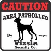 Vizsla Bumper Sticker Caution: Vizsla Caution Bumper Sticker #USAOnlineShopping #USAShopping