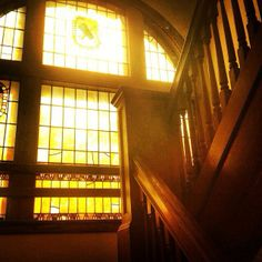Golden light pours through stained glass windows in Howard Hall. By Maura Scott, first-year advertising and sociology major. #DrakePOTD