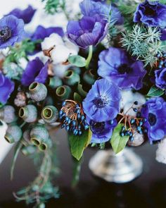 Blue anemones and gumnuts