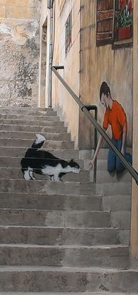 Unknown Artist:Malta / street art that is an illusion of a boy feeding his cat / technically excellent / got the true perspective perfectly proportioned ✅