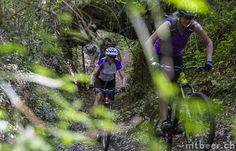 Bikeferien in der Toscana, Fahrtechnik, Enduro und Freeride Weekender, Tuscany, Trail, Unique, Tuscany Italy