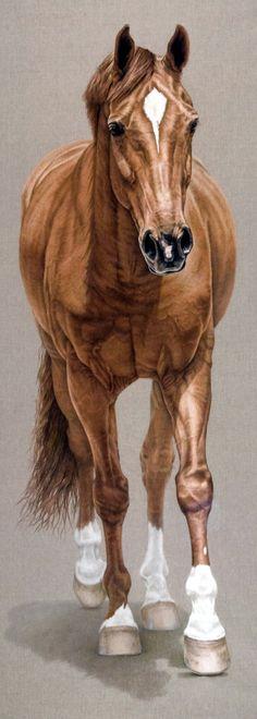 Horse Art - Portrait painting of Vivaldi - by artist Susan Van Wagoner