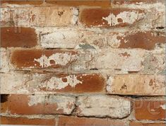 lime washed brick - Google Search